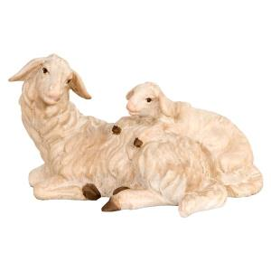 Sheep laying w. lamb